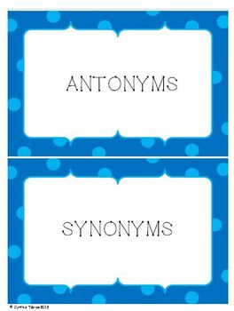 Antonyms and Synonyms Sort