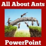 Ants PowerPoint Science Activity
