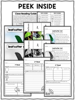 Close Reading Passage - Leafcutter Ant Activities