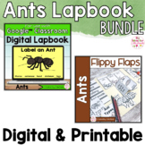 Ants Activities Interactive Notebook Digital and Printable Bundle