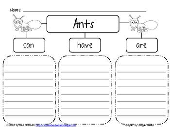 Ants Brace Map- FREEBIE