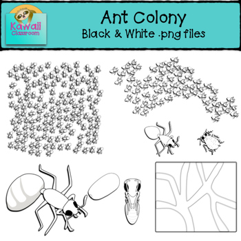 Ants Clipart (Black and White)