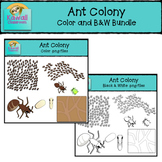 Ants Clipart Bundle (Color and B&W)