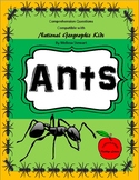 Ants / Compatible with National Geographic Kids