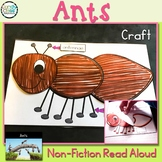 Ants Craft: A Spring Science Non-Fiction Read Aloud Activity