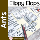 Ants Activities Interactive Notebook Lapbook