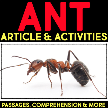 Ants: Informational Article, QR Code Research & Fact Sort