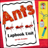 Ants! Interactive Lapbook Unit (1st - 4th Grades)