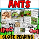 Ants Reading Passages | Ants Close Reading