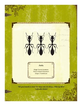 Ants Themed Nature Education Unit-Stage 2 (Magic Forest Academy)