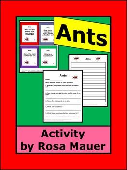 Ants Animal Lives Series