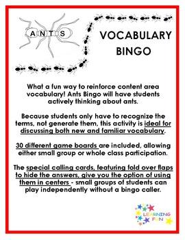 Ants Vocabulary Bingo