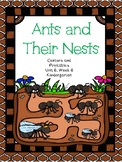 Ants and Their Nests, Kindergarten, Centers and Printables, Unit 6, Week 6