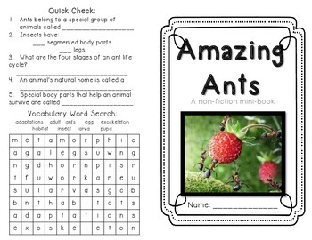 Ants - minibook on life cycle, adaptations and anatomy
