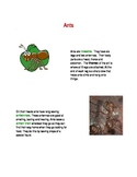 Ants text