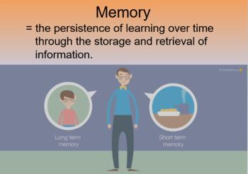Ap Psychology Myers Unit 7 Cognition