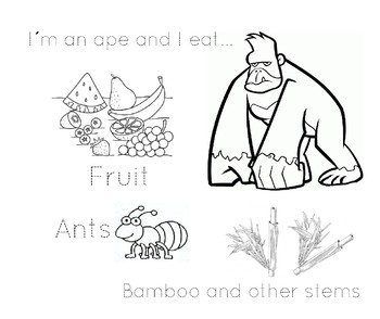 Ape -workpage/worksheet
