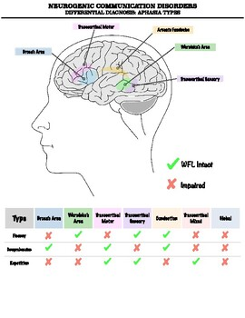Aphasia Differential Diagnosis Chart
