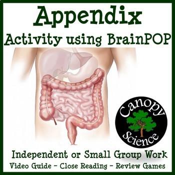 Appendix BrainPOP