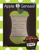 Apple 5 Senses Craftivity