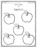 Apple 5 senses activity