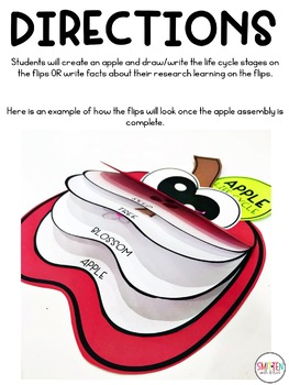 Apple Activities | Apple Life Cycle Facts Flip Book