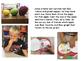 Apple Activities Book Craftivity