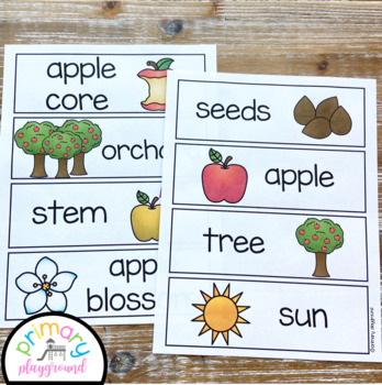 Apple Activities No Prep Math, Literacy and Science Pack