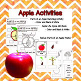 Apple Activities: Parts of an Apple & Life Cycle