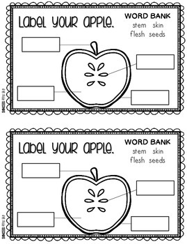 Apple Activities for Math, Science, and Writing