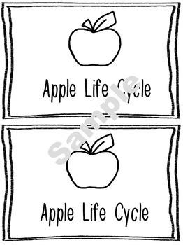 Apple Unit Activity Pack