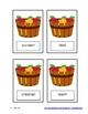 "Apple Basket ""Singular and Plural Noun Match"" Literacy Center"