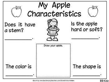 Apple Characteristics for Kindergarten - freebie