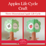 Apple Craft {Apple Life Cycle Craftivity}