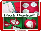 Apple Life Cycle: {Life Cycle of an Apple Craft}