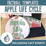 Apple Life Cycle Factball Craftivity and Fact Sheet