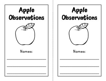 Apple Experiment (Kindergarten and 2nd Grade)
