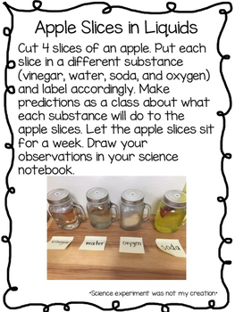 Apple Experiment with Interactive Science Notebook