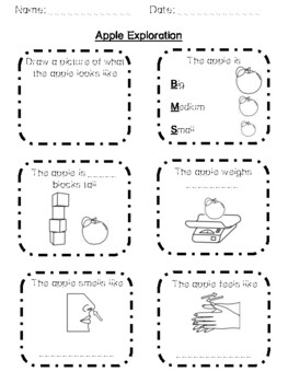 Apple Exploration and Investigation Worksheet and Minibook *FREEBIE*