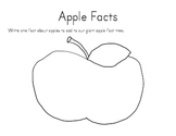 Apple Facts Class Tree