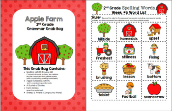 Apple Farm 2nd Grade Grammar Grab Bag #5