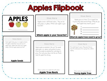 Apple Life Cycle Flipbook