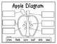 Apple Fun with Johnny Appleseed {Common Core Aligned}