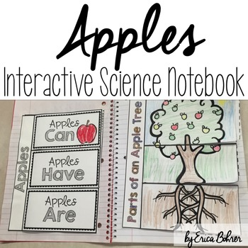 Apples Interactive Science Notebook