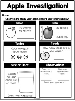 Apple Investigation {*NO PREP* Hands on Science Sheet}