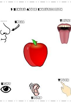 Apple Investigation and Johnny Appleseed STEM Challenge Bundle