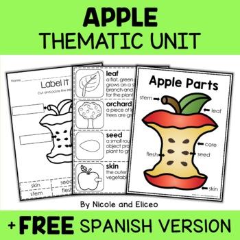 Apple Activities Thematic Unit