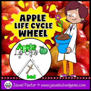 Plant Life Cycle Activities (Apple Life Cycle Craft)
