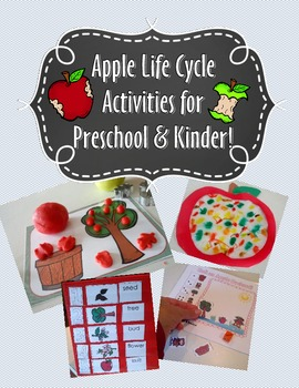 Apple Life Cycle Activities and Worksheets  for Preschool and Kindergarten