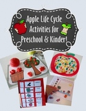 Apple Life Cycle Activities and Worksheets  for Preschool